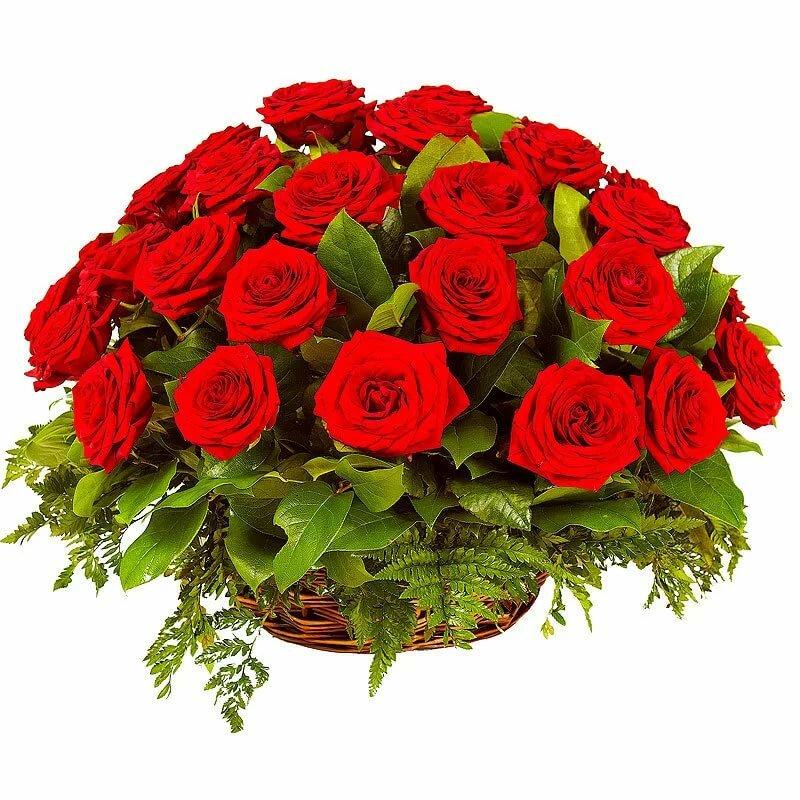 Самые красивые картинки с розами с днем рождения