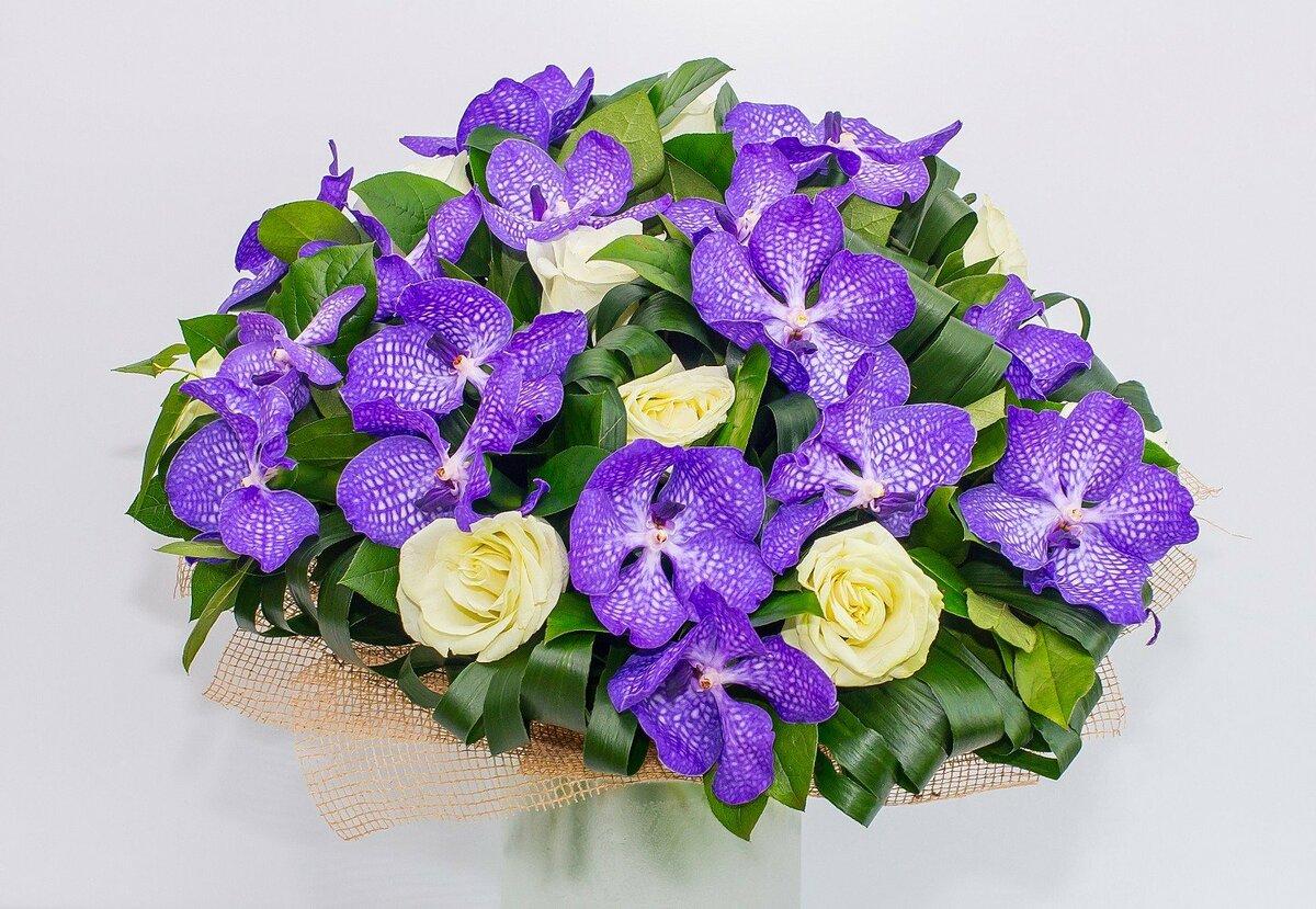 Букеты из орхидеи ванда фото