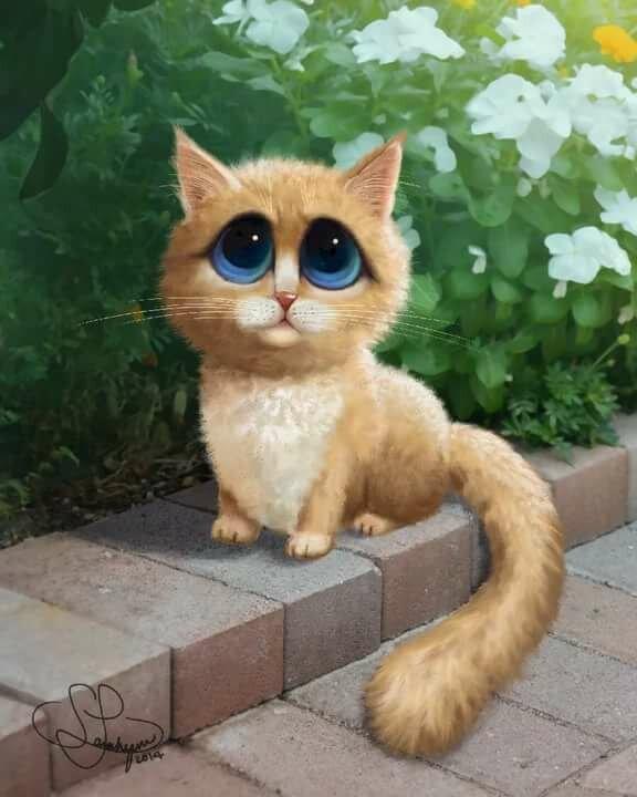 картинки котика с большими глазами описанием