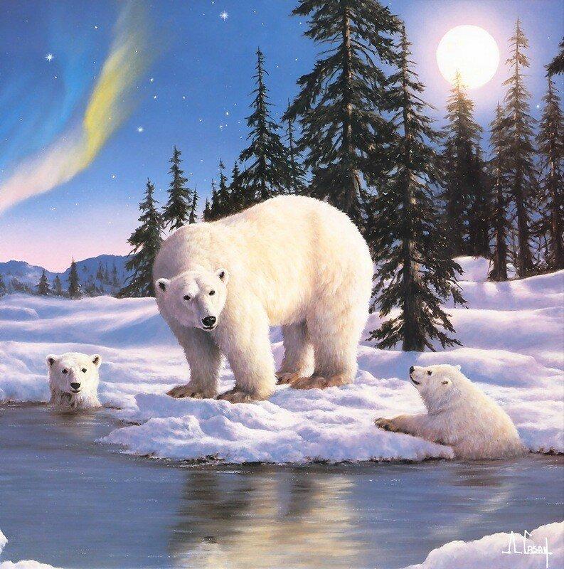 Добрым, картинки и анимашки с медведями