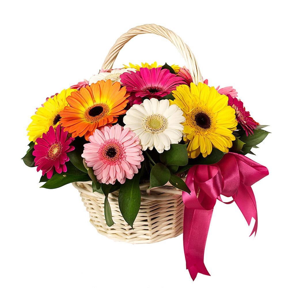 Картинки цветов в корзине, классе