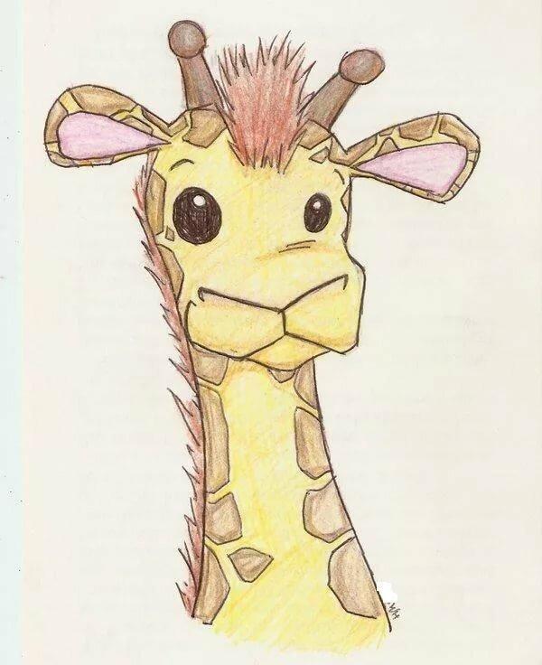 Пью вас, картинка жирафа для срисовки