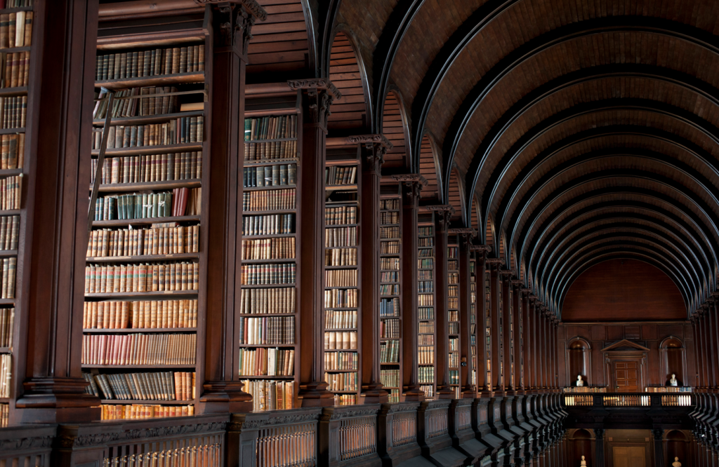 огромная библиотека картинка