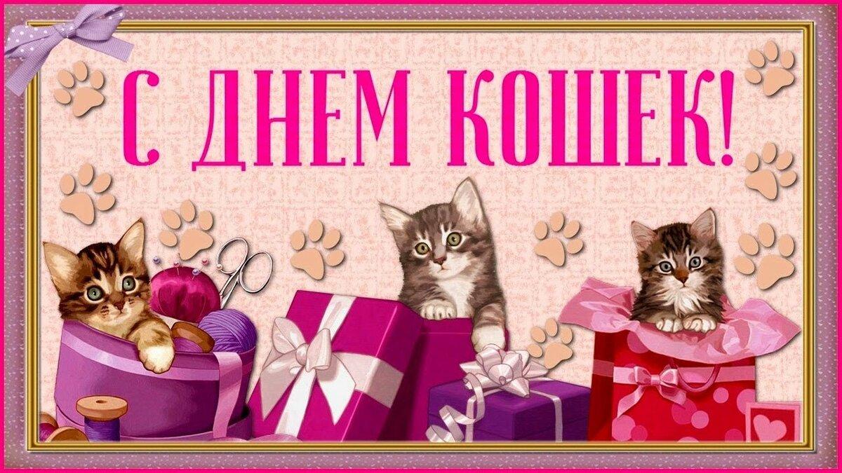 Днем рождения, с днем кошки открытка