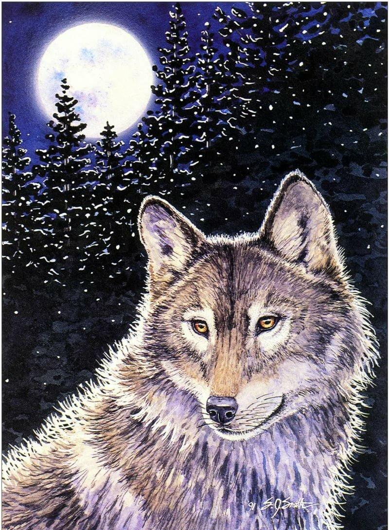Живые открытки с волками