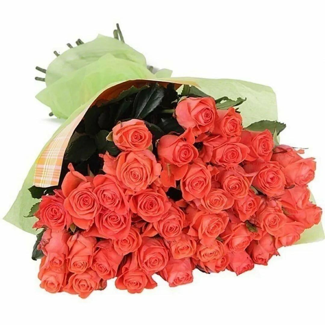 Красивые картинки цветов и букетов из роз с надписью красивой