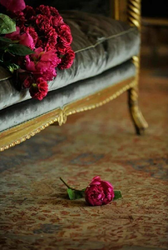 если розы на диване картинки щербань