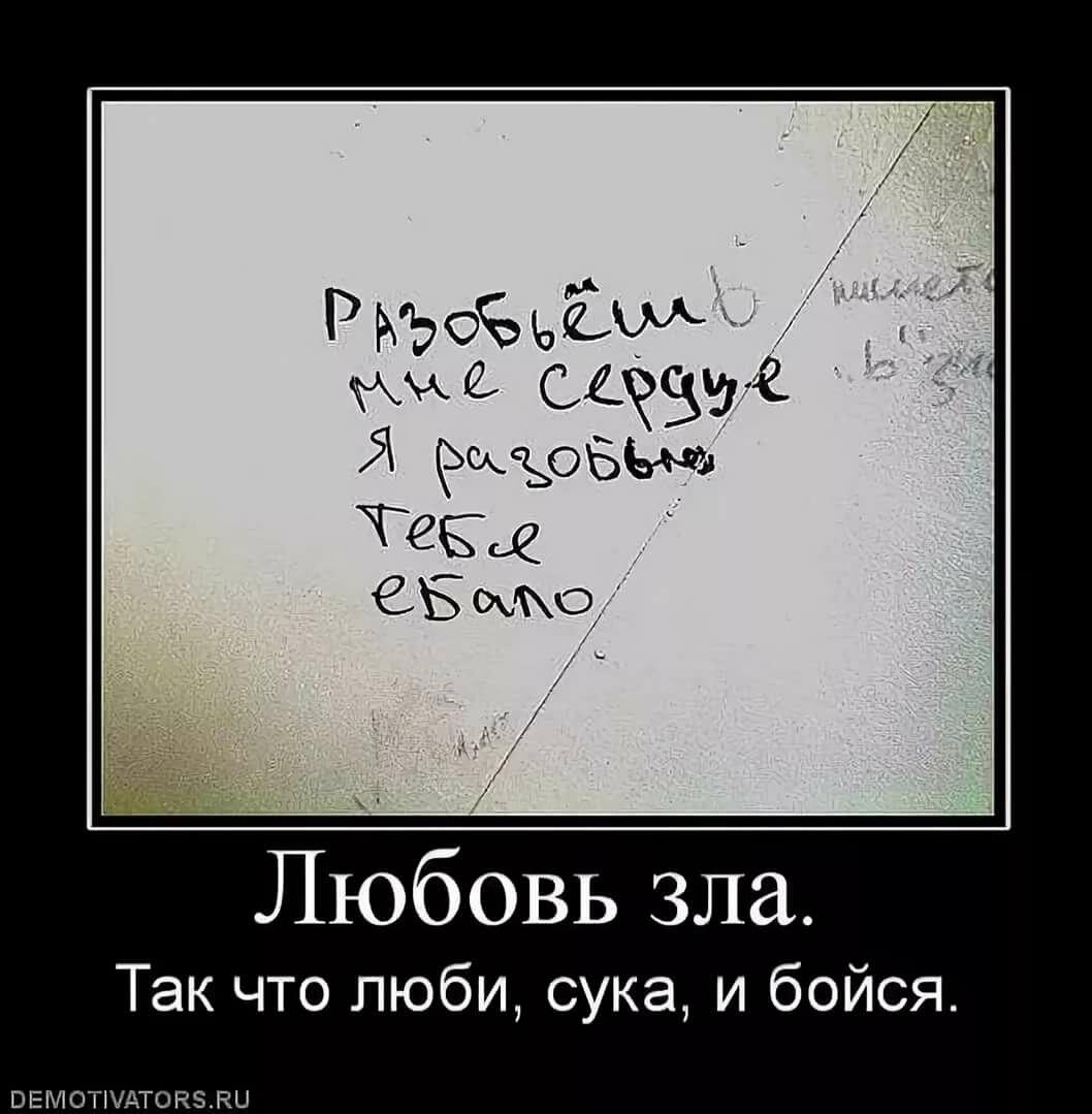 Смешные картинки твоя правда