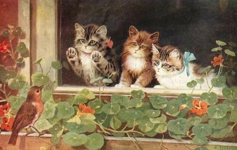 Картинки для декупажа коты и кошки котята