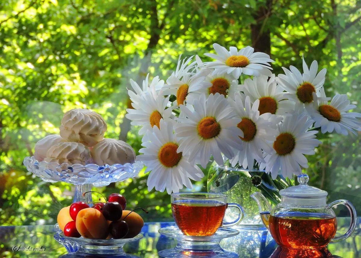 Доброе утро картинки красивые с природой летом красивыми пожеланиями