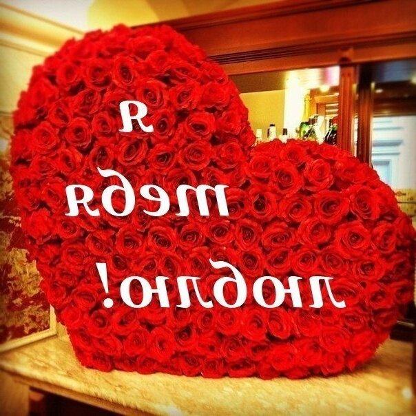 картинки розы я люблю тебя так сильно ульяновск анализ
