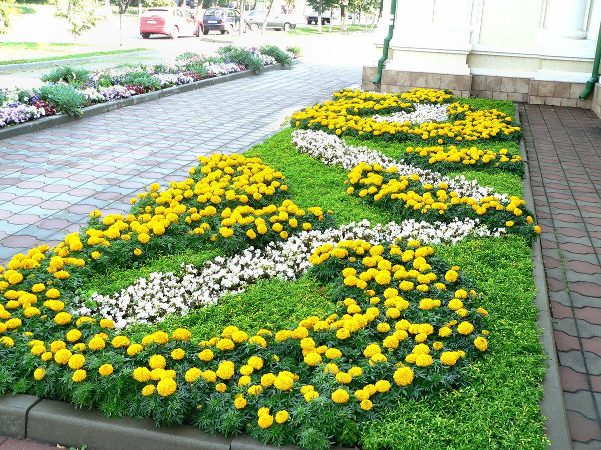 готовим картинки клумбы с цветами квадратной формы тебя