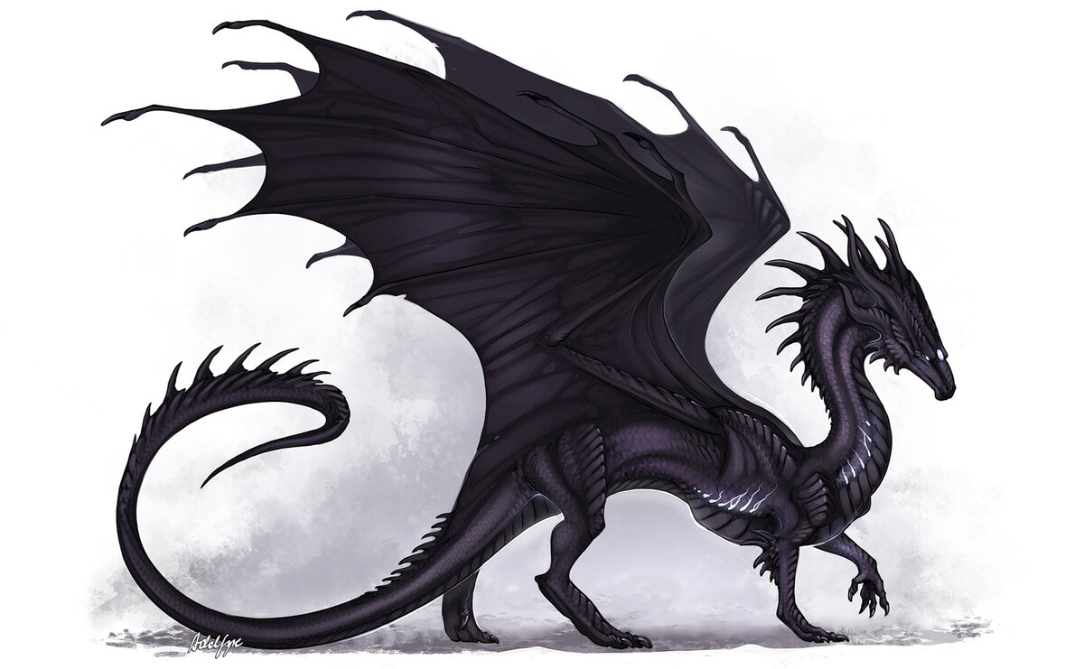 Черный дракон рисунки и картинки