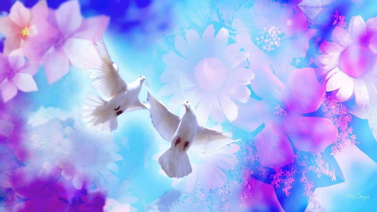 Фон открытки с голубями, днем