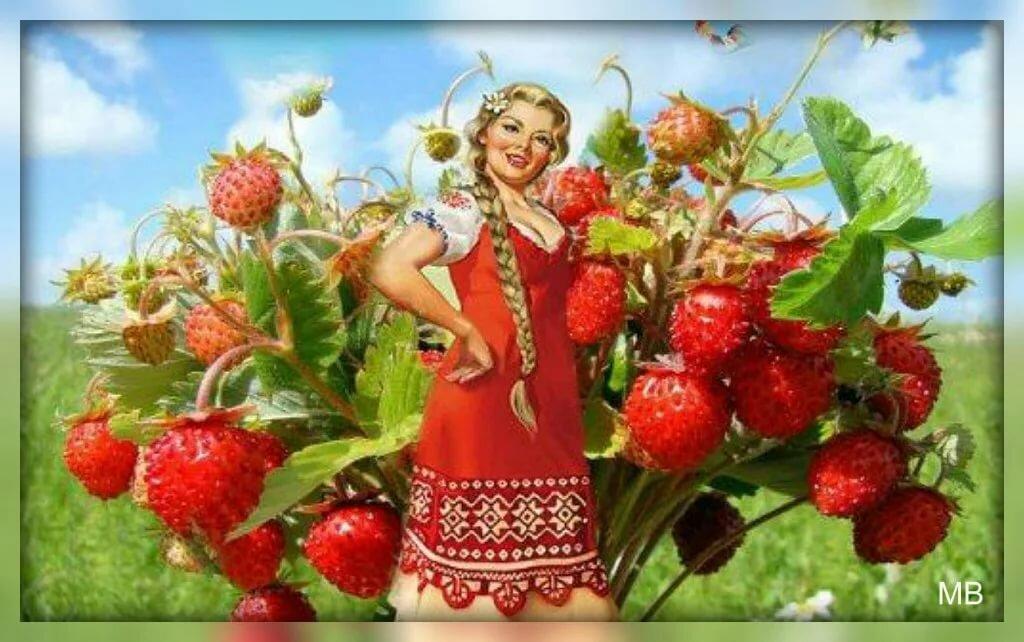 Картинка с приколом баба ягодка опять