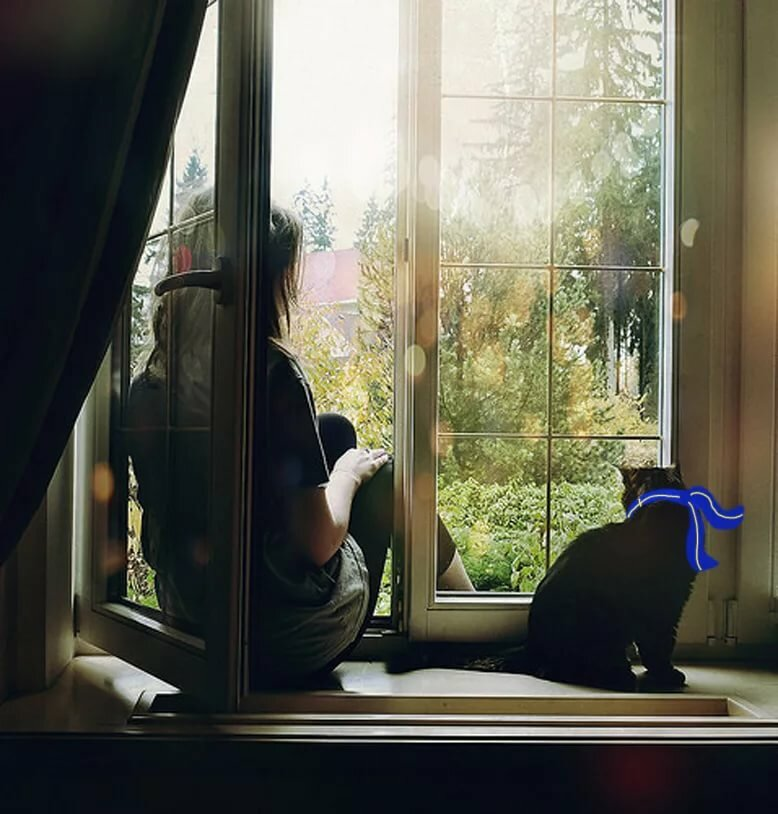 Хандри, картинки девушка с кошкой у окна