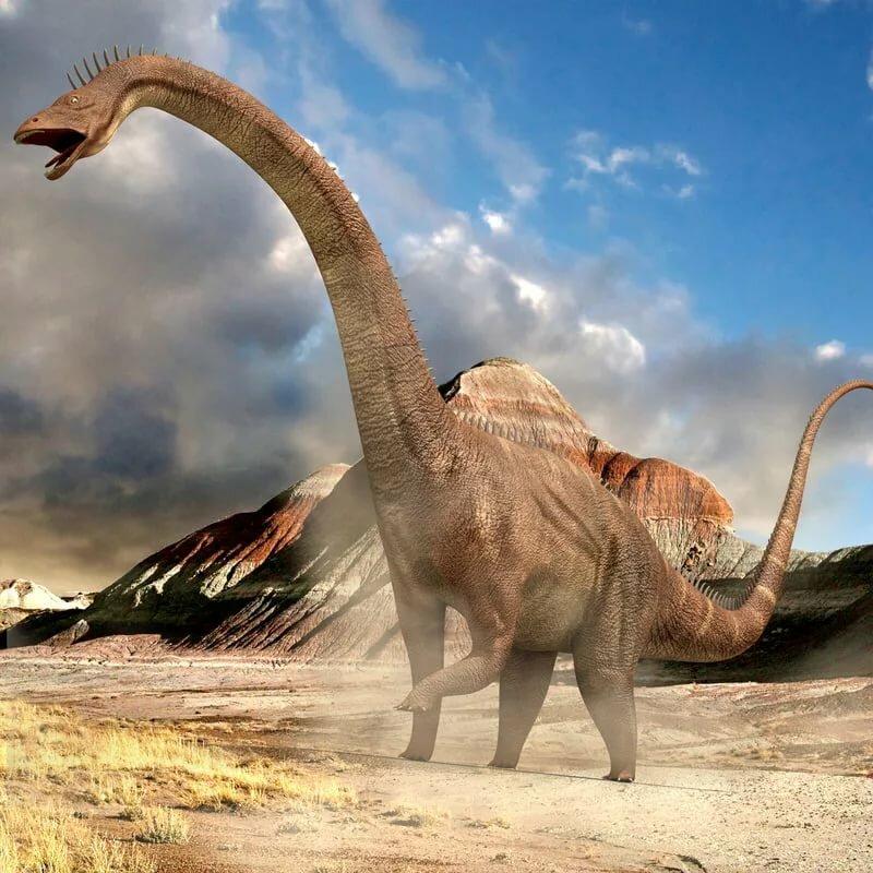 работа липецке, картинка самый быстрый динозавр это приспособление