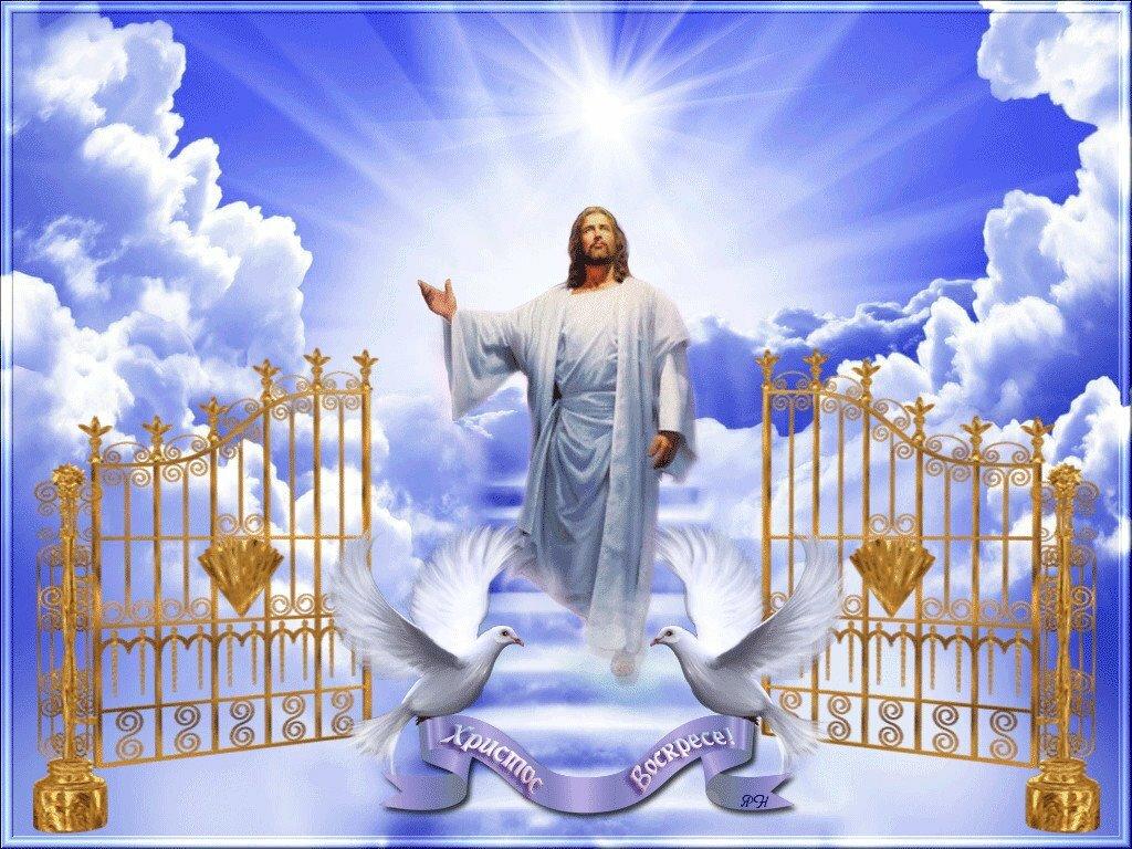 поле поиска поздравления с воскресением иисуса христа серовой