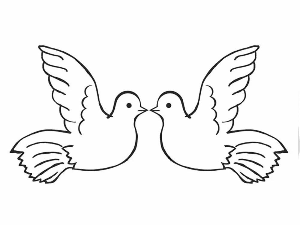 Открытки дню, картинка на печать голубь