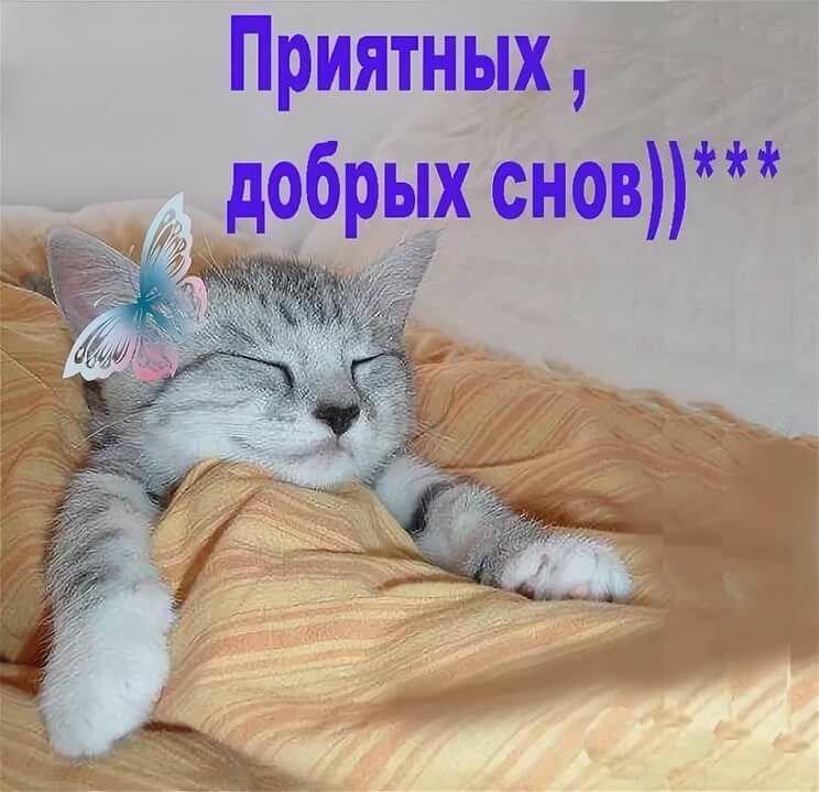 доброй ночи выздоравливайте картинки