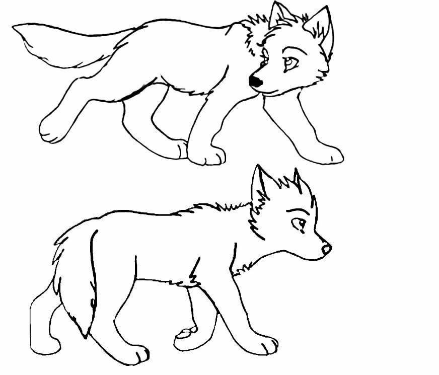 Волчонок рисунки в картинках шеврез считалась