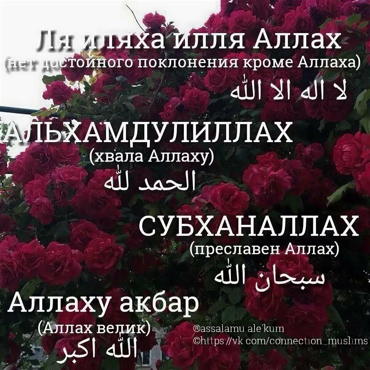 Исламские картинки с надписью хвала аллаху