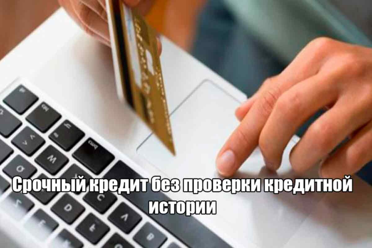 займ без кредитной истории