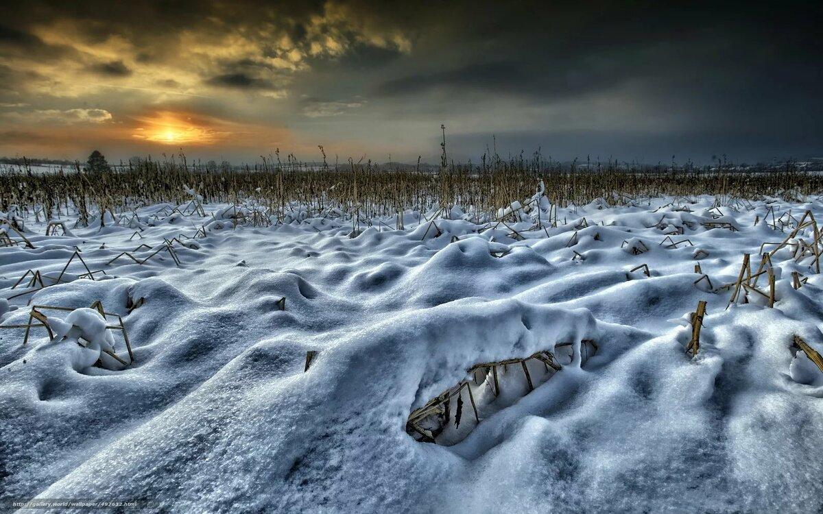 популярности она картинки поля в снегу создания можно использовать