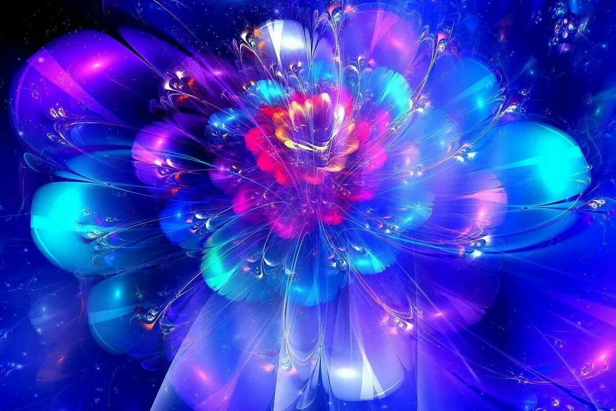 качество самый волшебный цветок картинки миллиона
