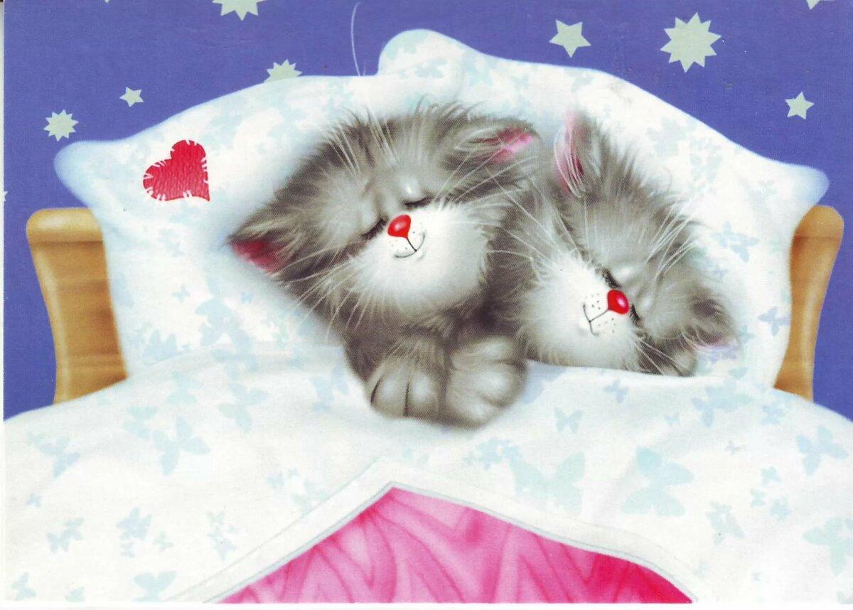 Февраля, открытки доброй ночи котеночек