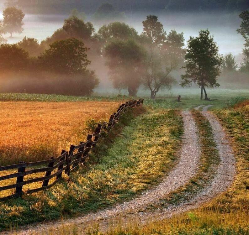 Деревенские дороги в картинках