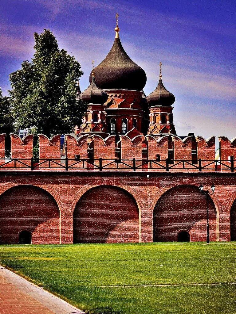 Ель кремлевская голубая фото плитку