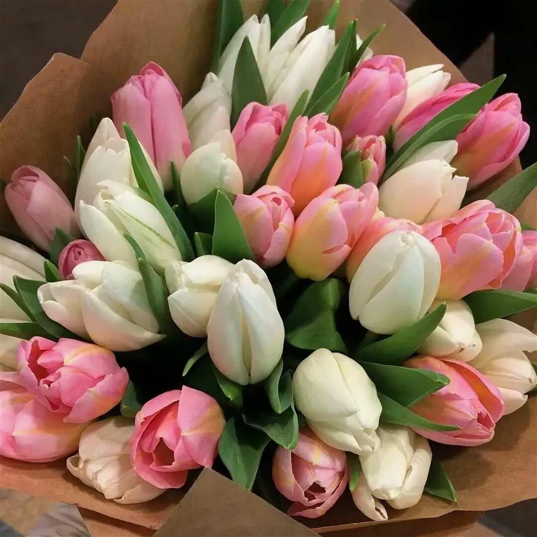 Недорогие цветы, тюльпаны фото букетов дома