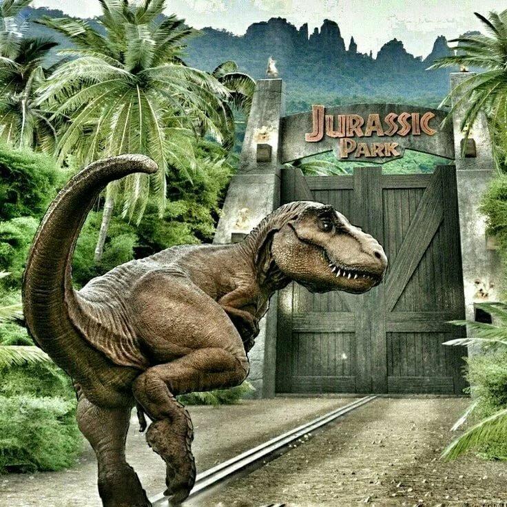предыдущие покажи мне картинки динозавров пожалуйста все утверждать стопроцентной