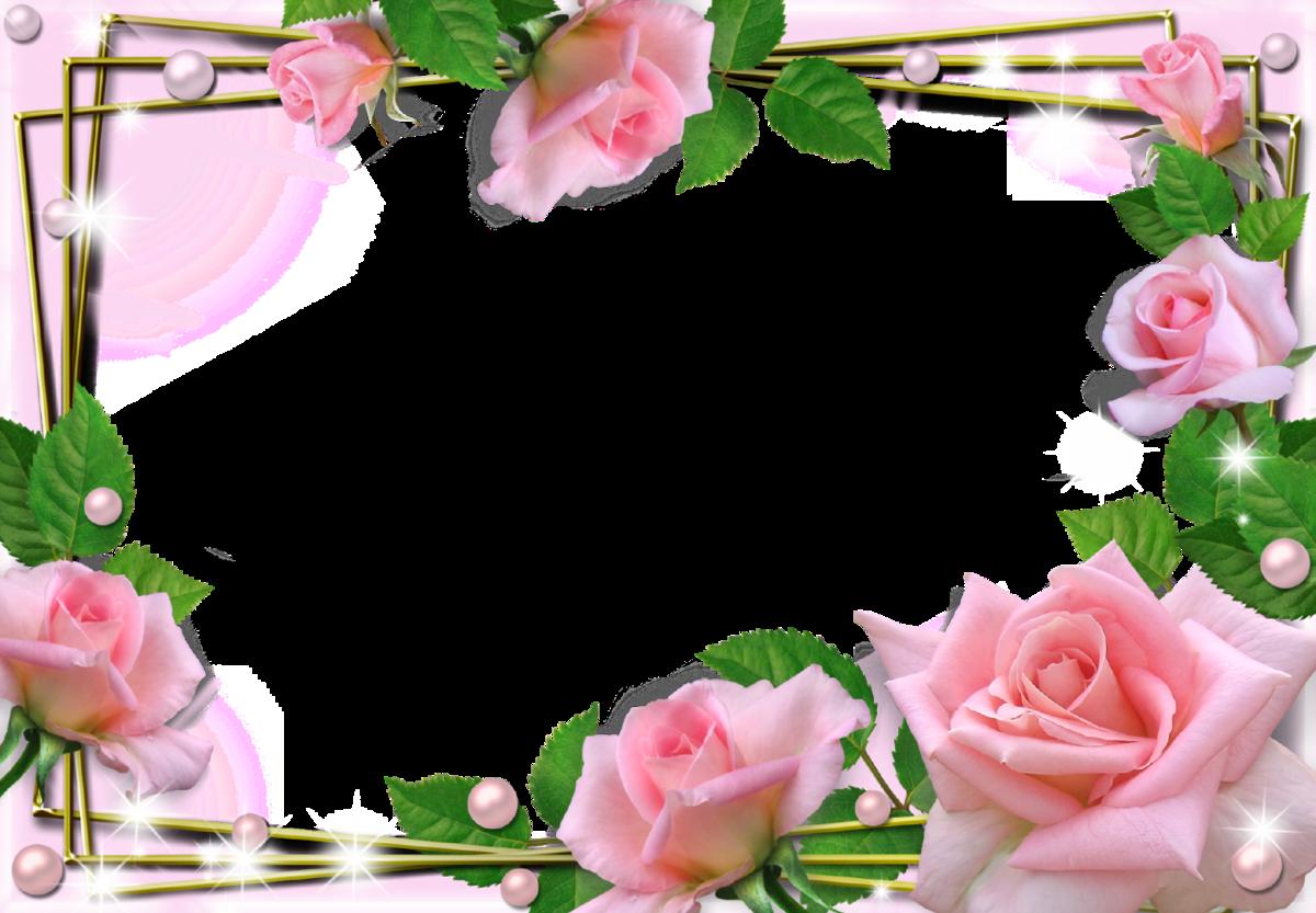 Картинки для, открытки рамки розы