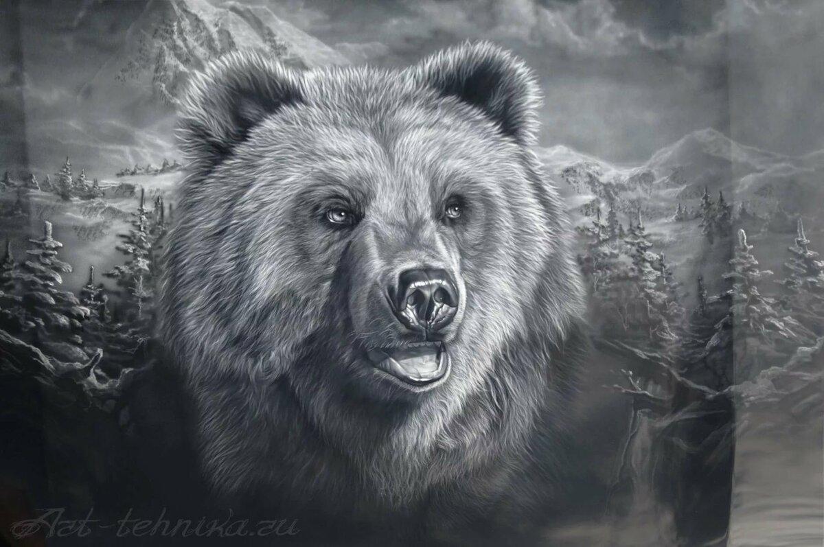 свитер картинка медведя карандашом на рабочий женщин