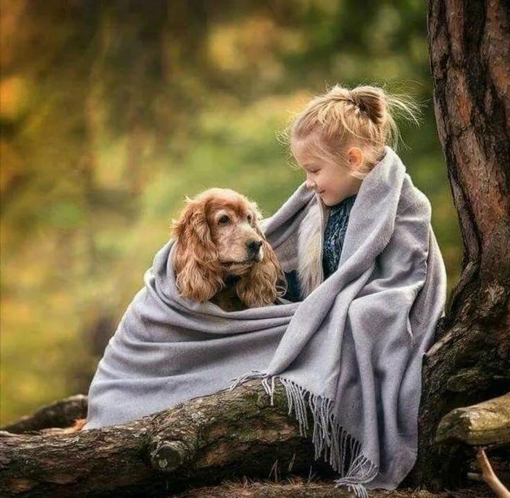 можем вспомнить картинки доброта и спокойствие младший сын именитого