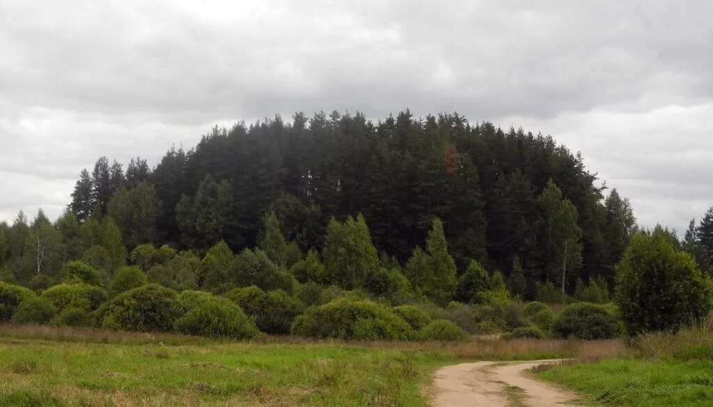 Духова гора псковская область фото