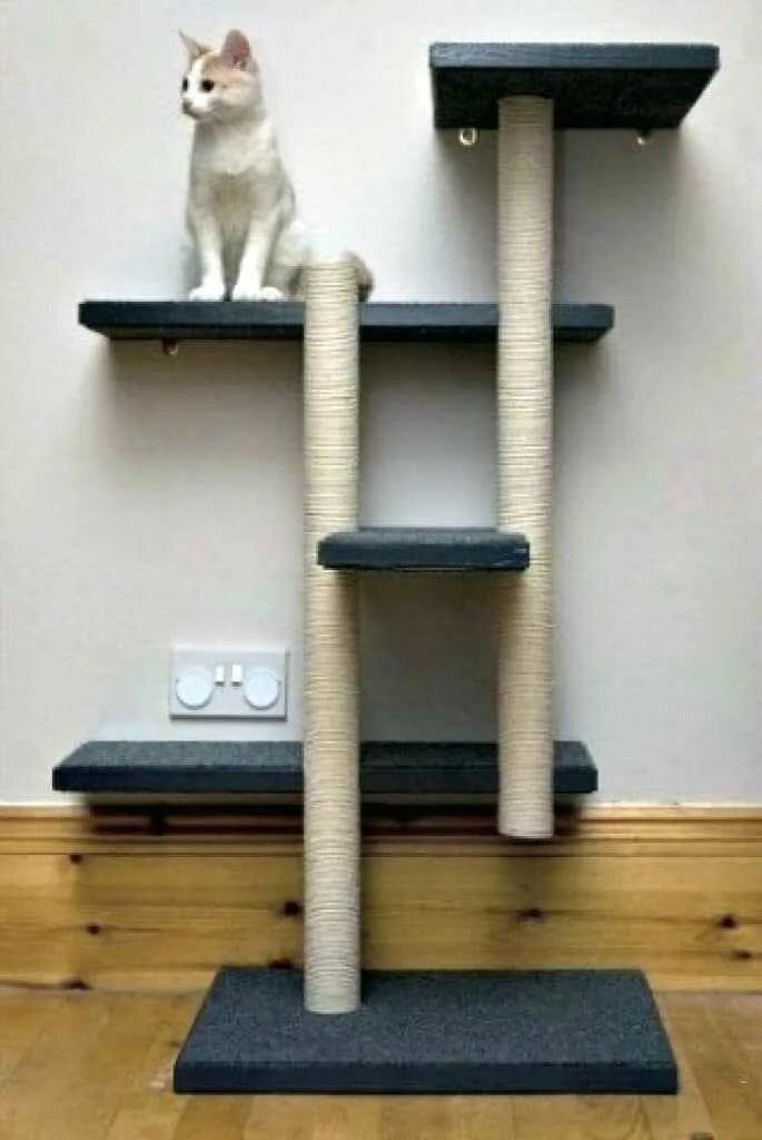 коньяк уголок для кошек своими руками фото последней стадии папулы