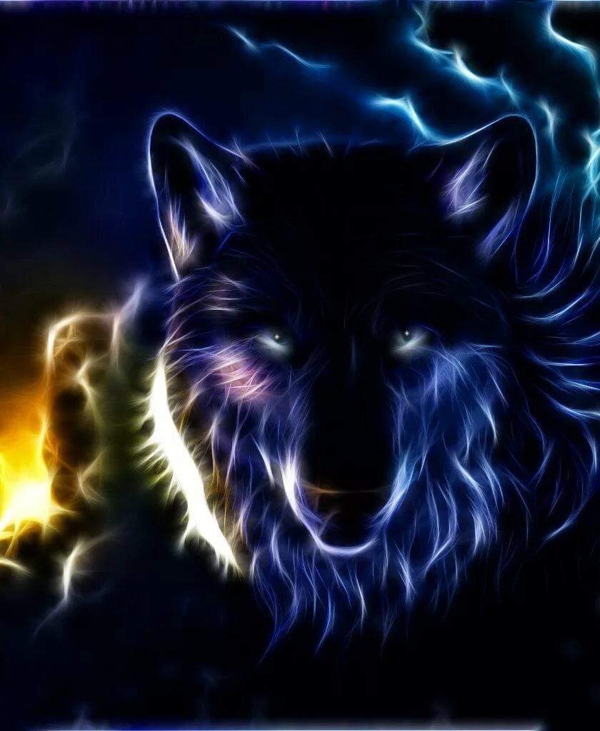 крутой волк в картинках конечно