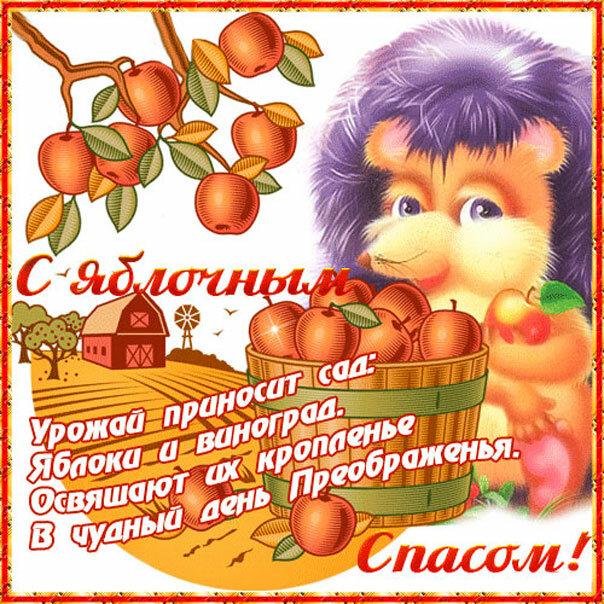 С яблочным спасом стихи открытки