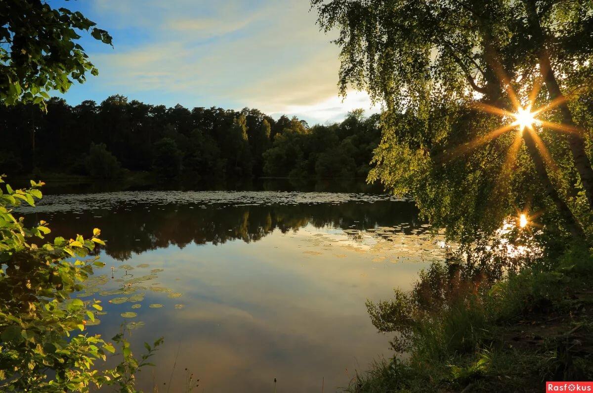 День, теплый летний вечер картинки