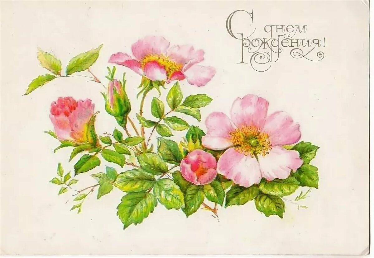 Открытка с цветами нарисованные
