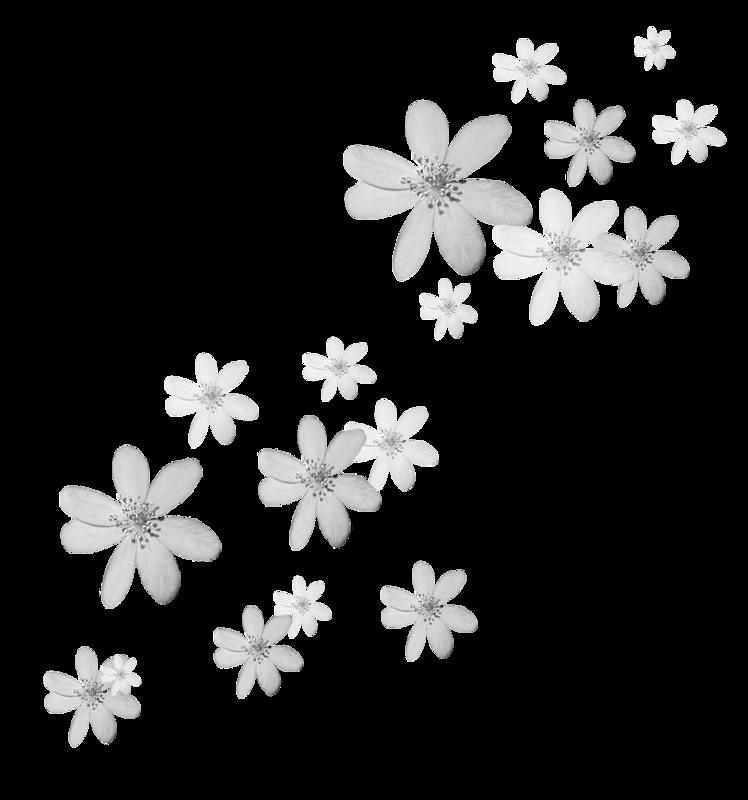 картинка мелкие цветочки на белом фоне этому значительно напрягаются