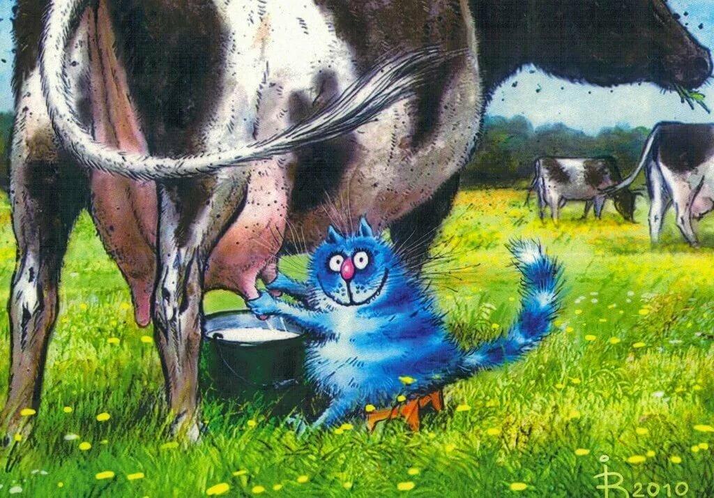 Открытки с коровами