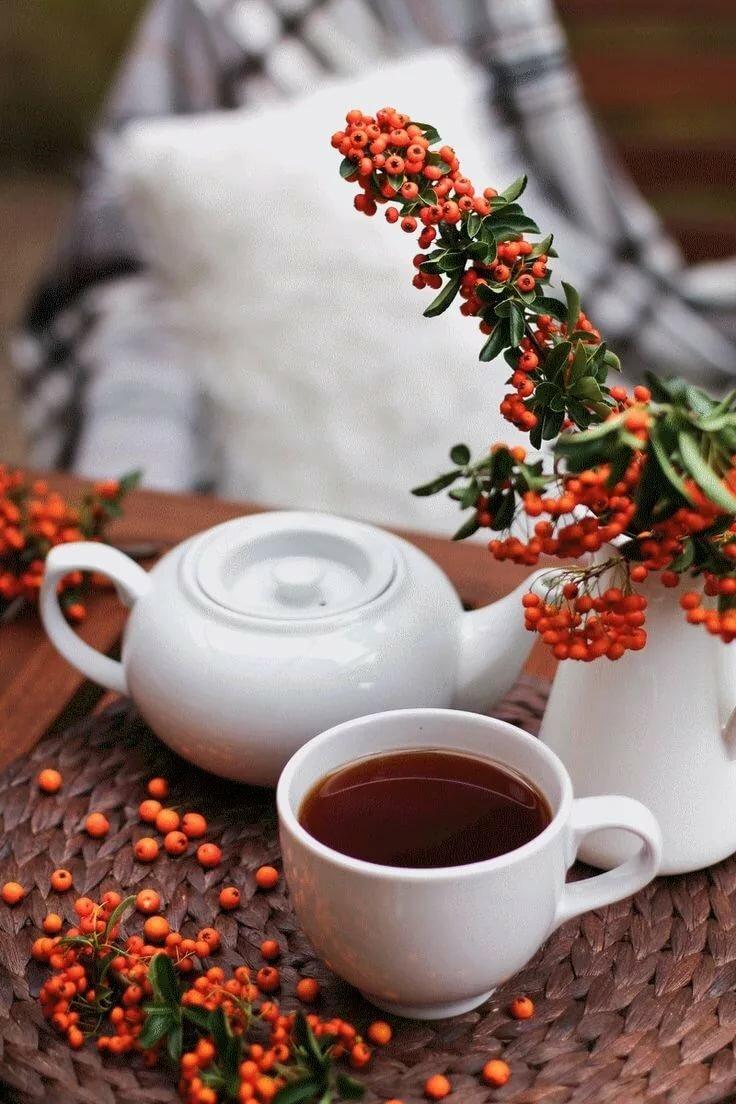 гифки с чашечкой кофе цветком и зимой брус имеет только