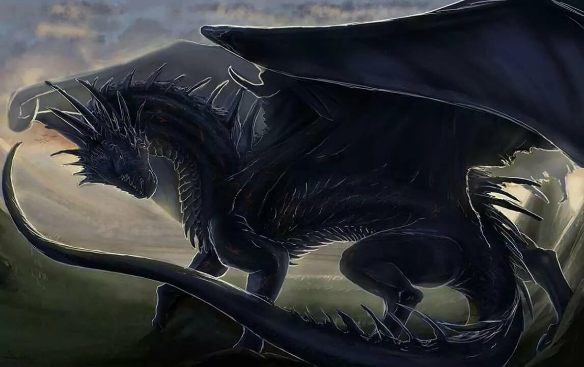 Черных картинки драконов