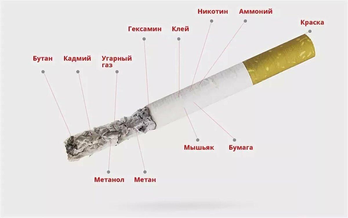 Состав сигареты в картинки