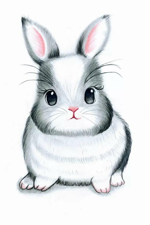 Картинки кроликов мультяшных