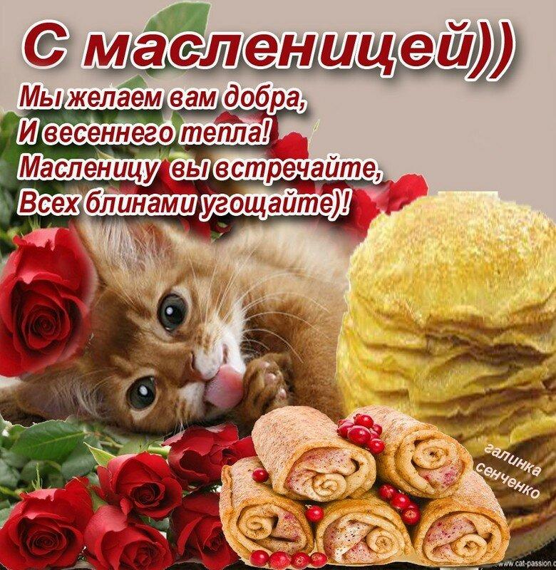 Поздравления с масленицей на открытках, открытки